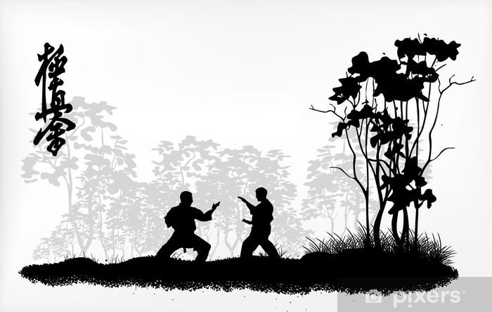 Fototapet av Vinyl Karate yrken - Teman