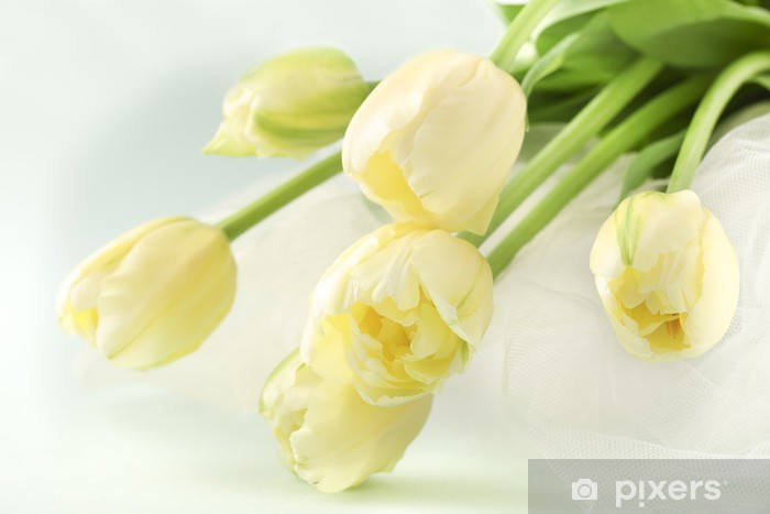 Papier peint vinyle Bouquet Tulip - Fleurs