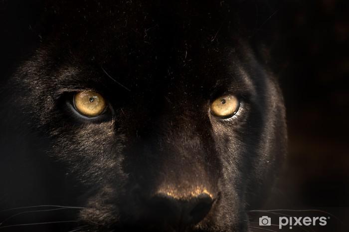 black panther Pixerstick Sticker - iStaging