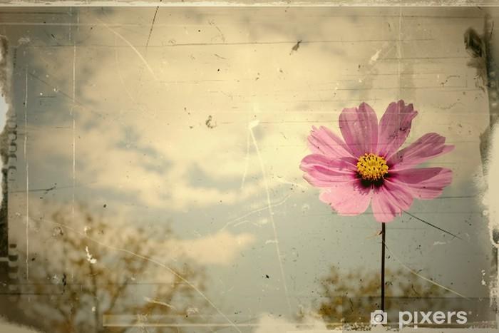 Naklejka Pixerstick Archiwalne różowe stokrotki wiejący latem - Pory roku