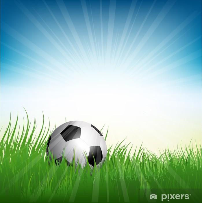 Papier peint vinyle Ballon de football ou niché dans l'herbe -