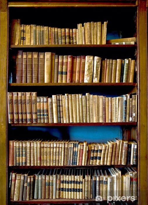 Vinilo Pixerstick Los libros de la biblioteca - Biblioteca