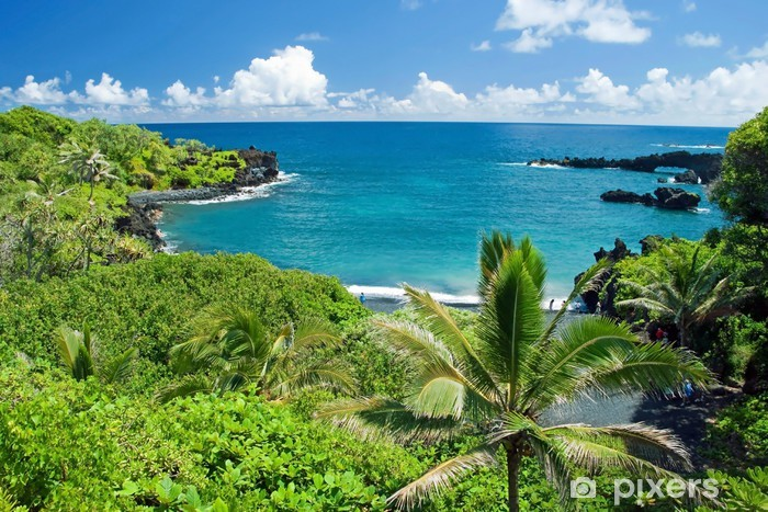 Hawaii Paradise On Maui Island Wall Mural Pixers We Live To Change