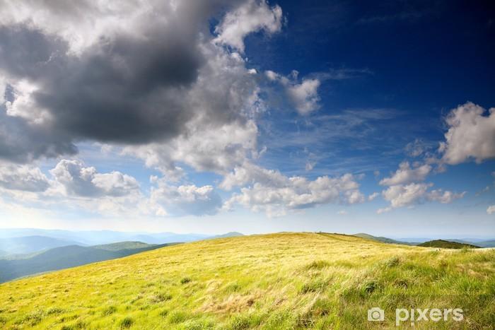 Fototapeta winylowa Natura. Górski krajobraz w lecie pole - Góry