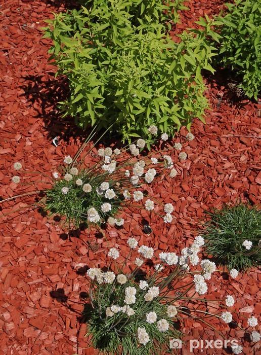 Naklejka Pixerstick Red wióry mulcz - Dom i ogród