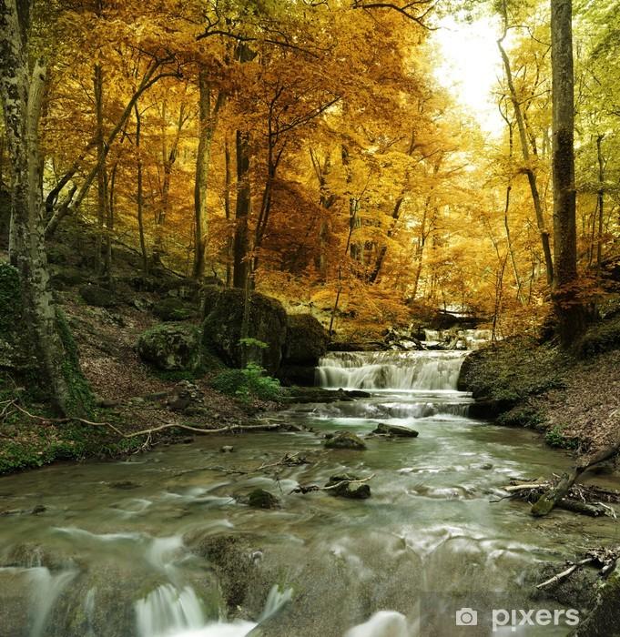 Fototapet av Vinyl Skog vattenfall - Teman