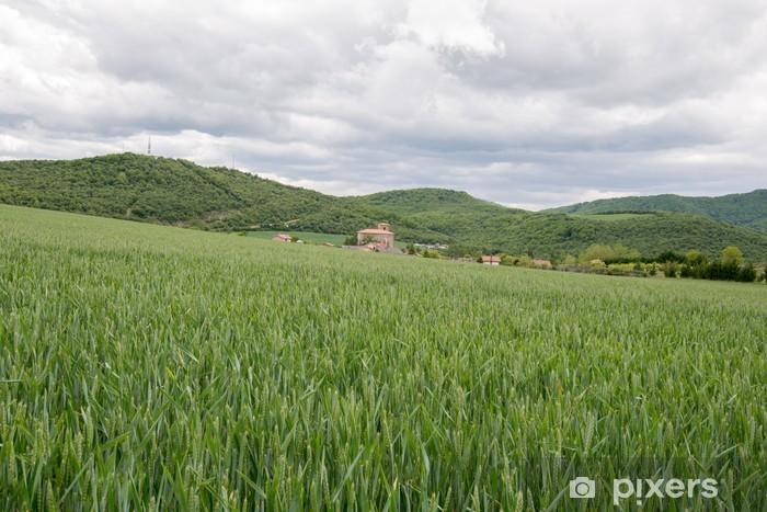 Landscape of wheat field in spring Pixerstick Sticker - Europe