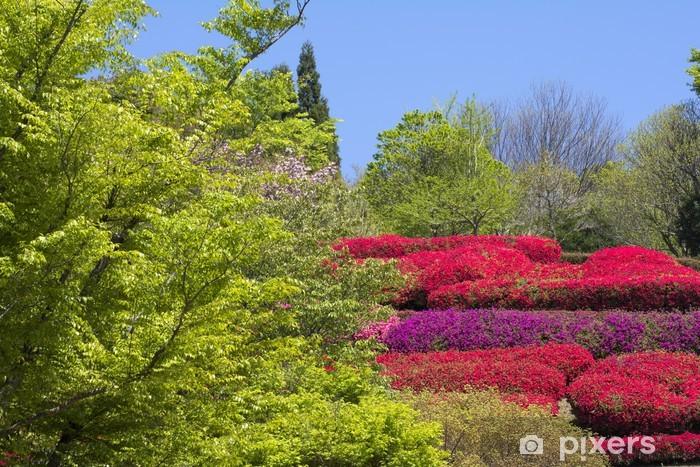 Naklejka Pixerstick Kwiaty Kurume azalii w pełnym rozkwicie i zielony - Kwiaty