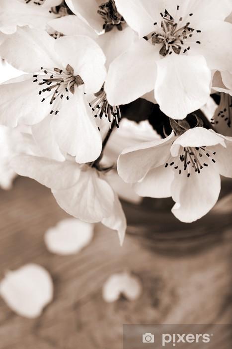 Fotomural Estándar Flor de manzano, procesado en el color sepia de la vendimia - Manzanos
