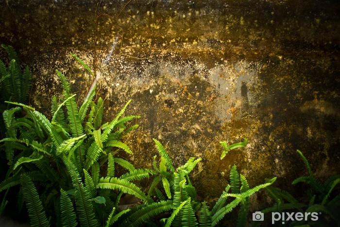 Adesivo felci che cresce su una roccia pixers viviamo for Una decorazione e formata da cinque rombi simili
