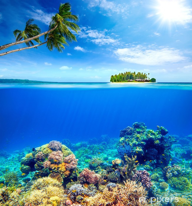 Pixerstick Sticker Prachtig koraalrif op de achtergrond van een klein eiland - Koraalrif
