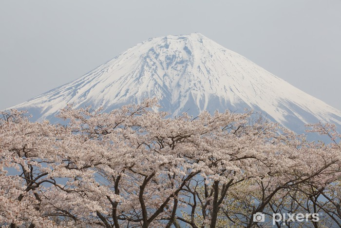 Fototapeta samoprzylepna Fuji górskie i sakura - Tematy