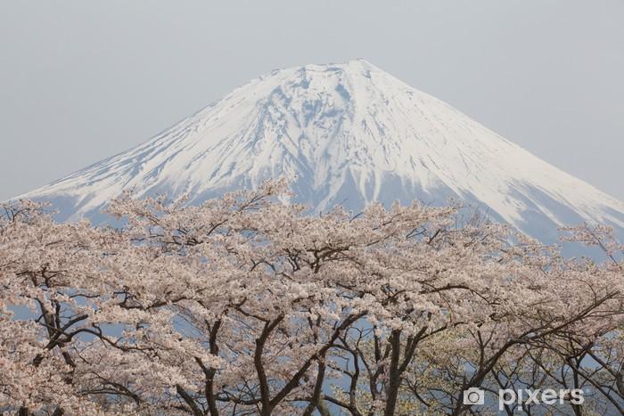 Kendinden Yapışkanlı Duvar Resmi Dağ fuji ve sakura -