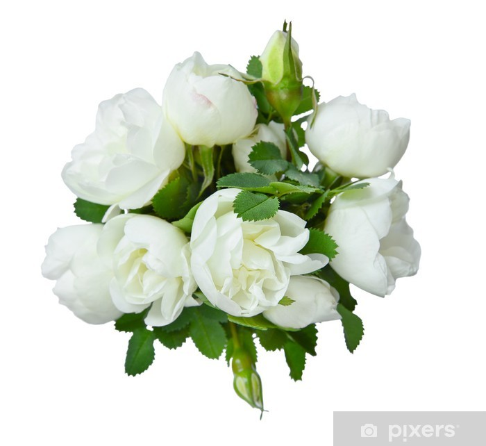 Fiori Bianchi Mazzo.White Bouquet Poster Pixers We Live To Change