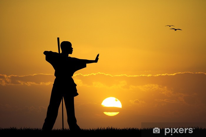 Vinylová fototapeta Kung fu při západu slunce - Vinylová fototapeta