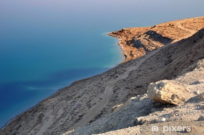 Papier peint vinyle Côte sauvage de la mer morte. Israël. - Moyen Orient