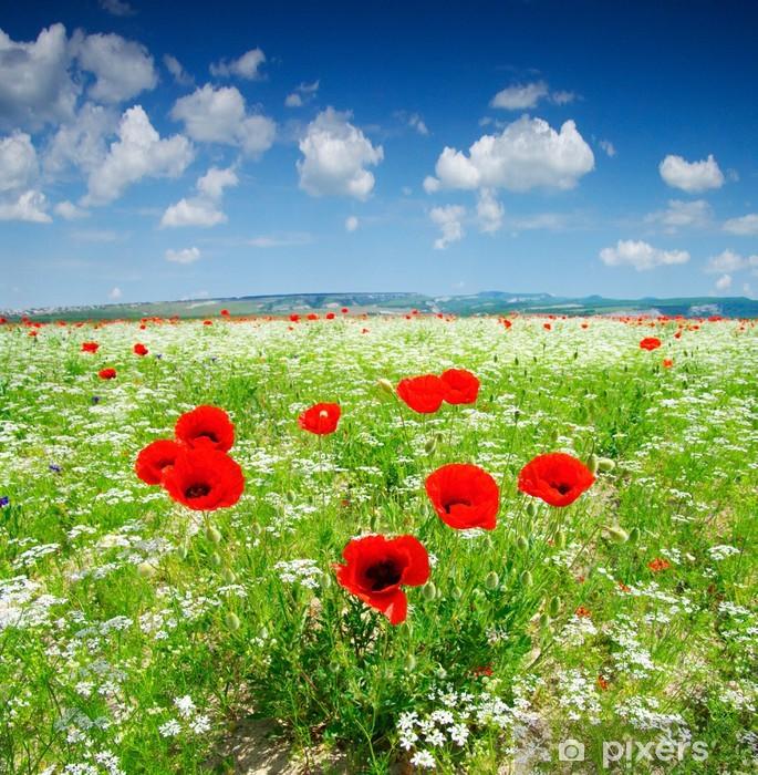 Fototapeta samoprzylepna Maki - Łąki, pola i trawy