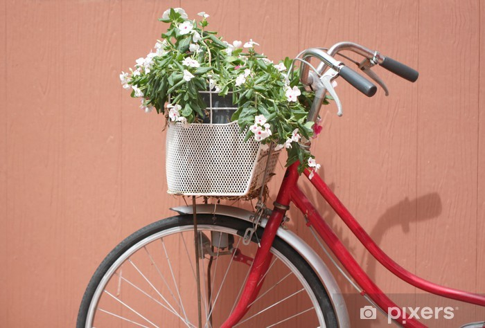 Fototapeta winylowa Czerwony rower i różowe kwiaty. - Transport drogowy