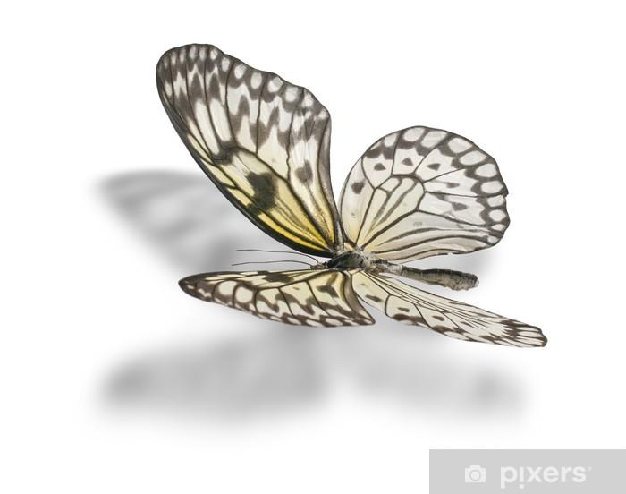 Sticker Pixerstick Butterfly. Isolé sur fond blanc - Autres Autres