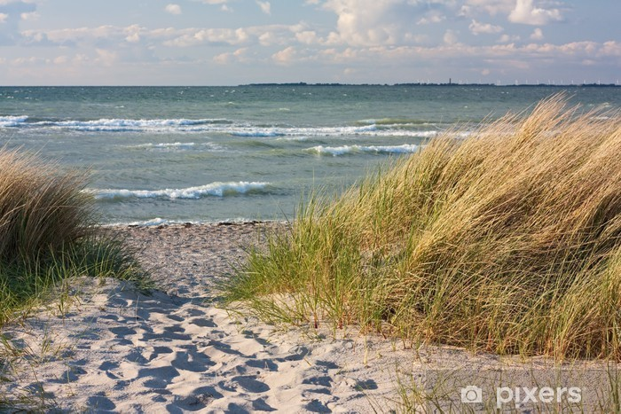 Pixerstick Sticker Duinen op het strand van de Baltische Zee in Heiligenhafen - Thema's