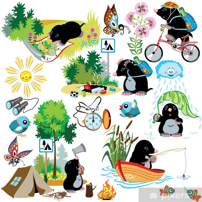 set with cartoon mole in camping Vinyl Wall Mural - Mammals