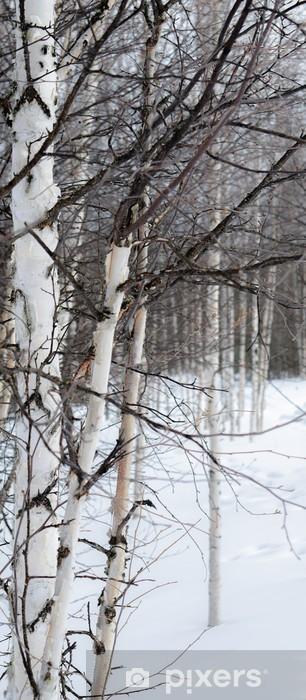 Naklejka Pixerstick Biała brzoza na białym śniegu - Tematy