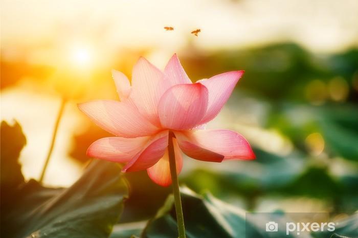 Sticker Pixerstick Fleur de lotus fleur - Fleurs