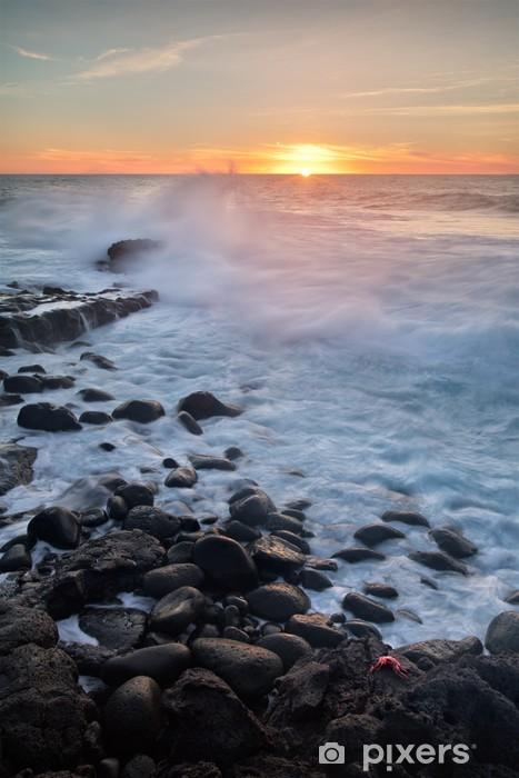 Fototapeta winylowa Plaże na Lanzarote - Wyspy