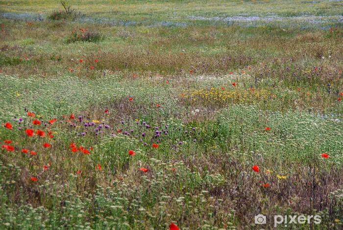Fotomural Estándar Pasto - Flores