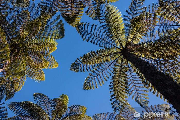 Naklejka Pixerstick Gigantyczne paprocie rosnące w lesie deszczowym - Rośliny
