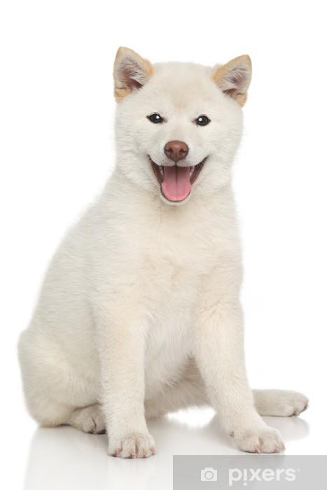 Pixerstick Aufkleber Glückliche Hundeportrait - Säugetiere
