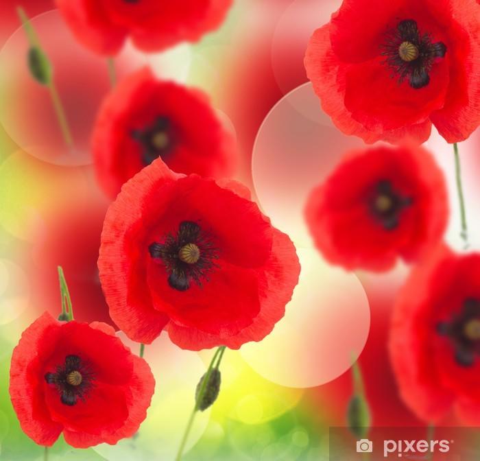 Póster Campo de flores de adormidera - Temas