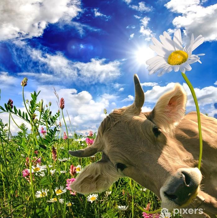 Alles Liebe zum Geburtstag: Kuh schenkt eine Blume :) Vinyl Wall Mural - Themes