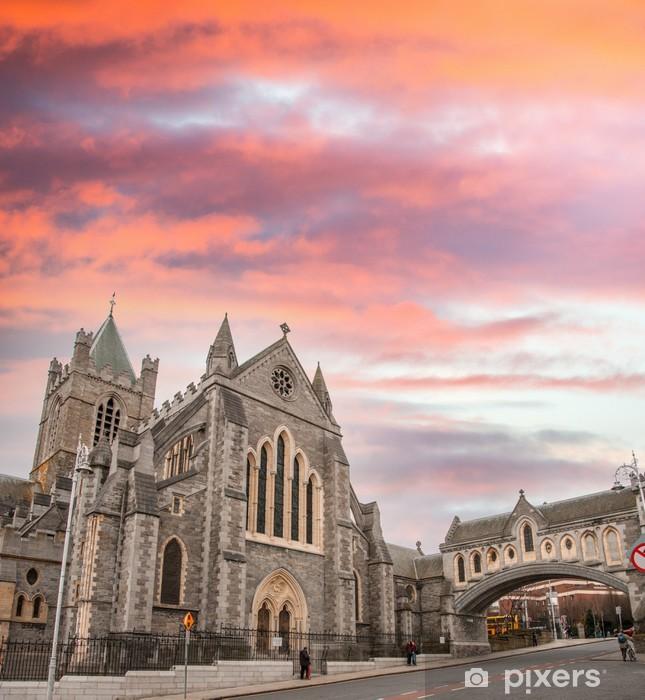 Fotomural Estándar Catedral de la Santísima Trinidad de Dublín, comúnmente conocido como Chris - Vida