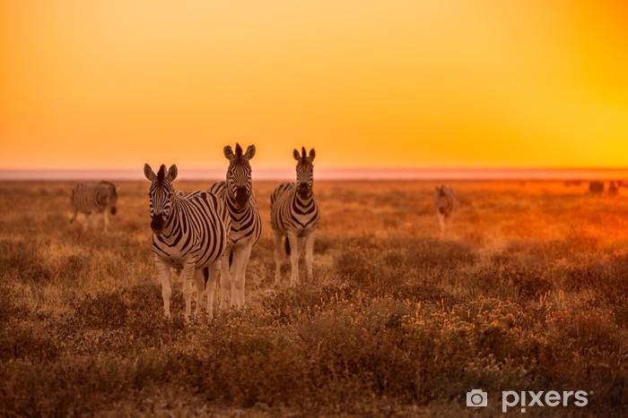 Vinyl Fotobehang Een kudde zebra grazen bij zonsopgang in Etosha, Namibië - Thema's