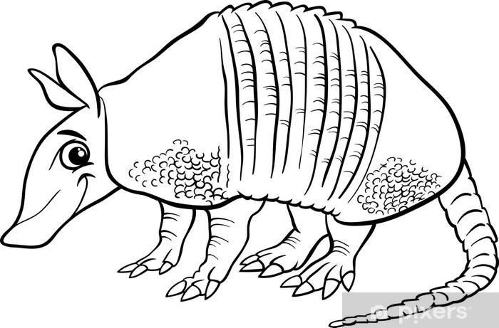 Armadillo Hayvan Karikatur Boyama Duvar Resmi Pixers Haydi
