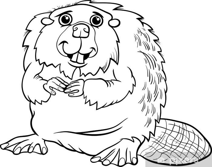 Carta Da Parati Colorare Cartone Animato Animale Castoro Pixers