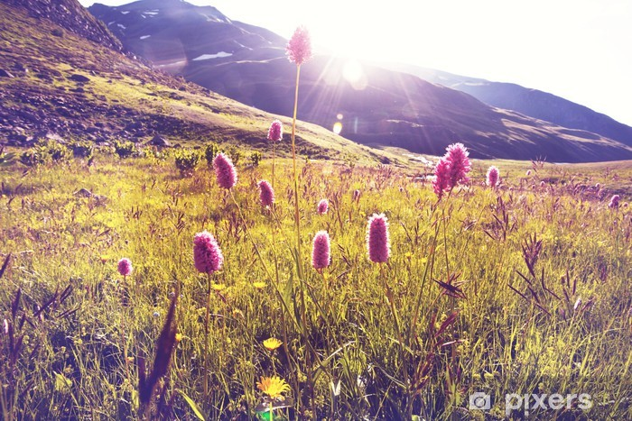 Adesivo Pixerstick Montagne prato - Temi