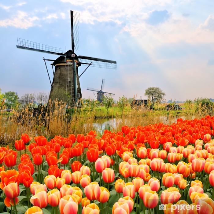 Pixerstick Sticker Klassieke Nederlandse windmolens, tulpen en de zonnestralen, Nederland - Windmolens