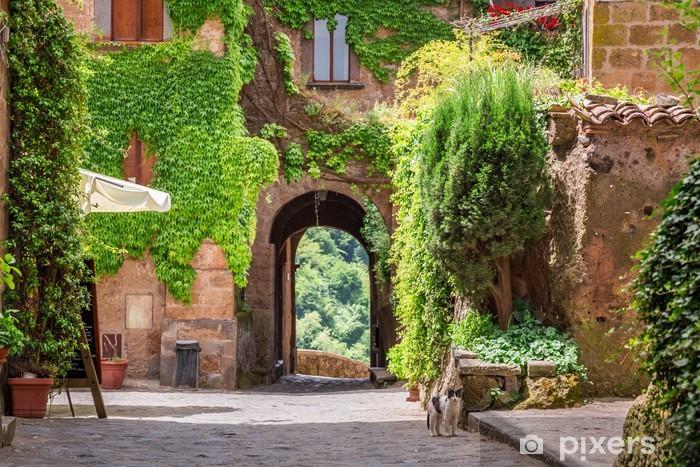 Naklejka Pixerstick Starożytne miasto porośnięte bluszczem w Toskanii - Tematy