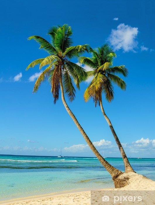 Palm trees entering the ocean, paradise beach Vinyl Wall Mural - Palm trees