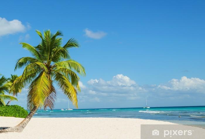 Palm tree entering the ocean on sandy exotic beach Pixerstick Sticker - Palm trees