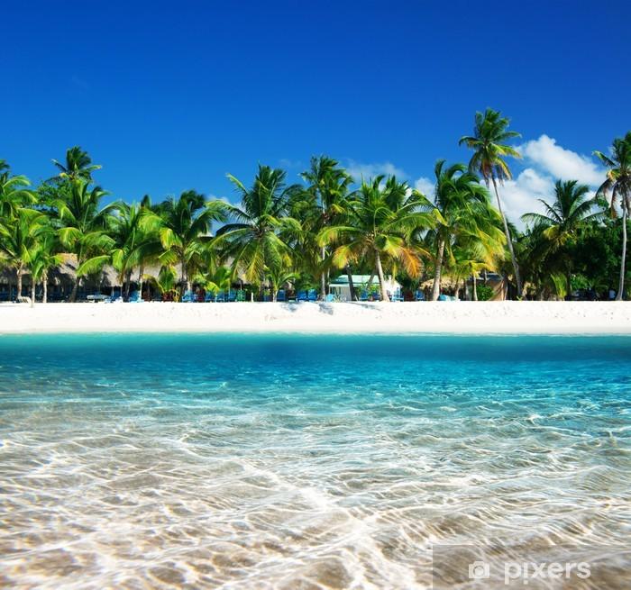 Plakat Tropikalna plaża - iStaging