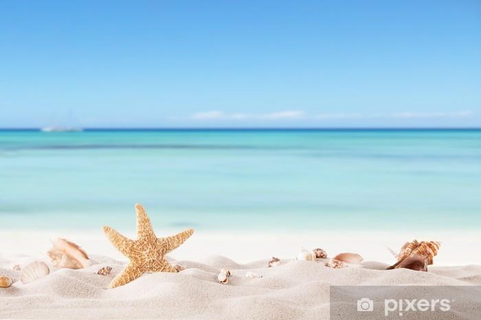Zelfklevend Fotobehang Zomer strand met strafish en schelpen - Thema's