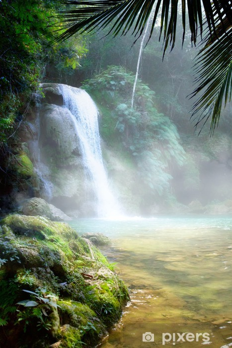 Art waterfall in a dense tropical rainforest Vinyl Wall Mural - Themes