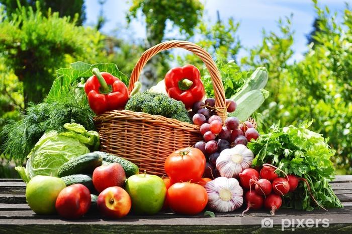Naklejka Pixerstick Świeże warzywa organicznych w koszyku wikliny w ogrodzie - Tematy