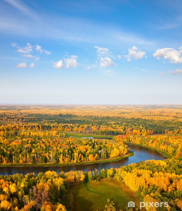 Vinil Duvar Resmi Sonbaharda orman nehri üzerinde üstten görünüm - Mevsimler
