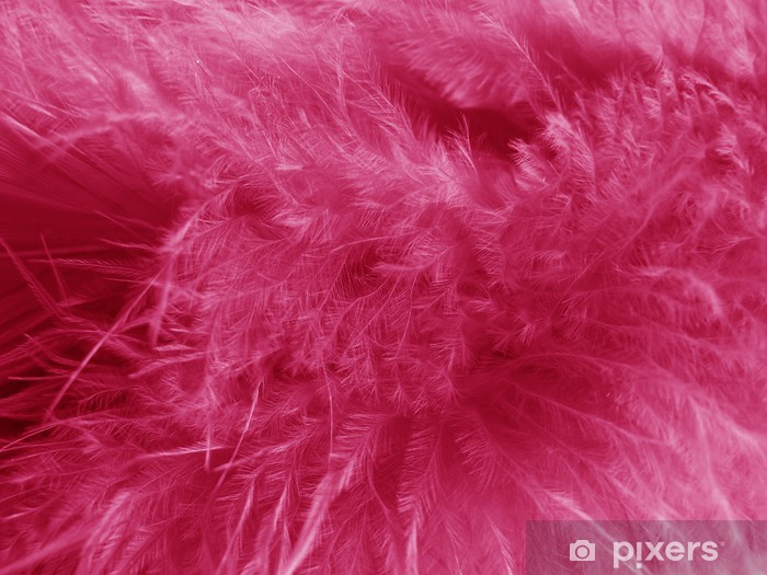 Naklejka Pixerstick Różowe piórko - Style