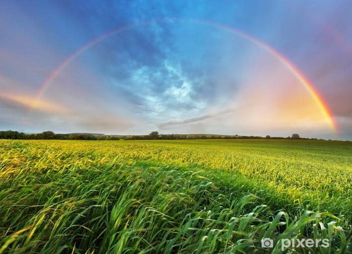 Rainbow over spring field Pixerstick Sticker - Rainbows