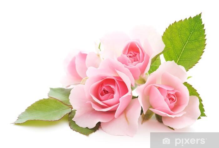 Pink Roses Pixerstick Sticker - Themes